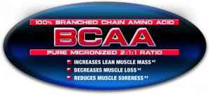 BCAA supplementation will aid in maximizing fat loss and preventing your muscles from breaking down.