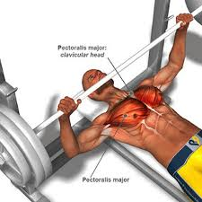 Explosive Chest training is uber important for ballistic strength and speed for athletics.
