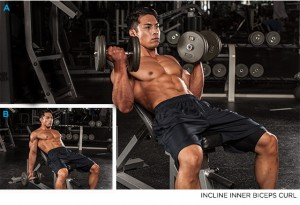 incline biceps curls