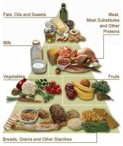 Differentiate between the caloric intake of your 3 macros: Protein - Fat - Carbs.