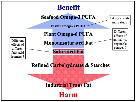 Saturated Fat Benefits 110